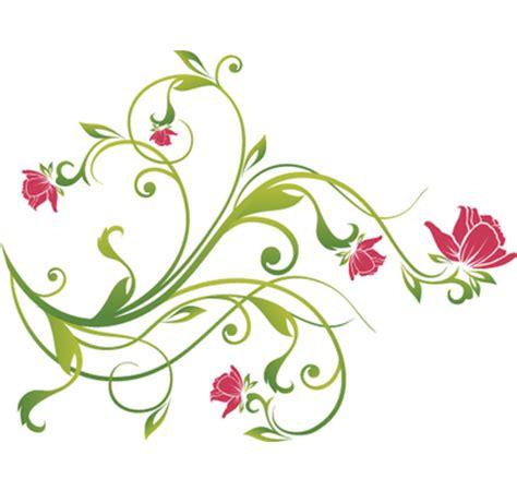 Essay on rose plant
